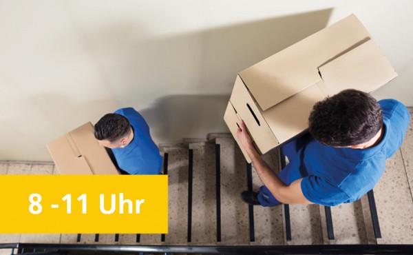 Spedi_Transport_und_Tragetechnik.jpg